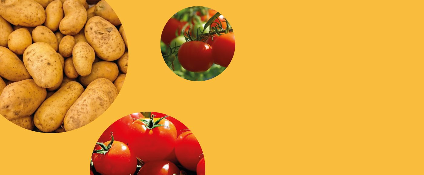 Helping the underprivileged obtain fresh and organic food at no cost